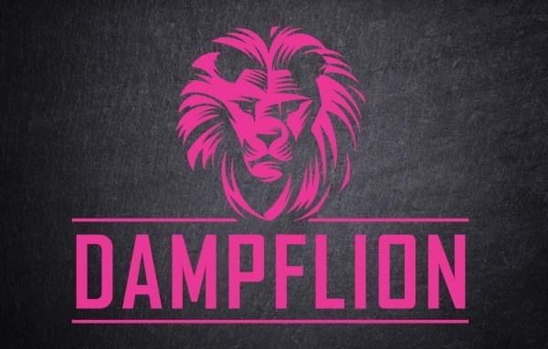 Dampflion Aroma Pink Lion 20ml