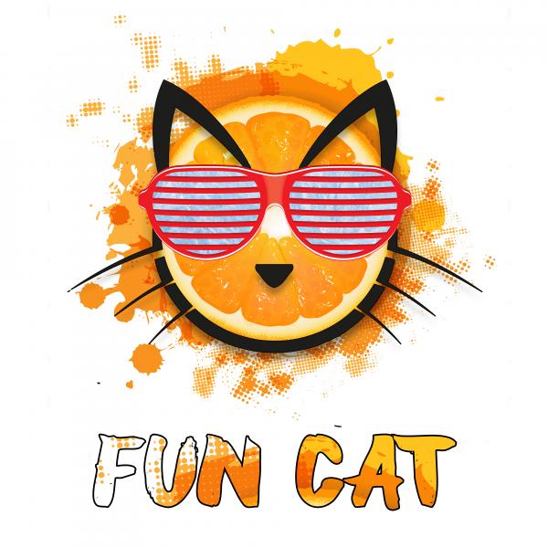 Copy Cat Aroma Fun Cat 10ml